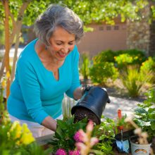 Independent living through gardening