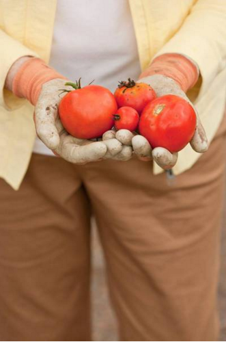 Tomatoes are a great source of Vitamin D.