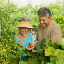 Retirement lifestyle can include gardening.